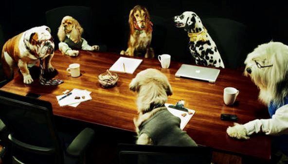 Board Meeting Companion Dog Training Club Of Flint